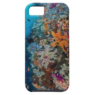 Fish and Coral Reef Scenic iPhone 5 Cover