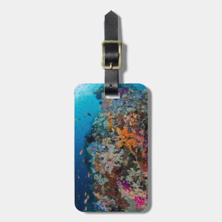 Fish and Coral Reef Scenic Luggage Tag