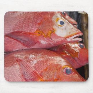Fish at market, town of Kalabahi, Alor Island, Mouse Pad