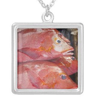 Fish at market, town of Kalabahi, Alor Island, Necklaces