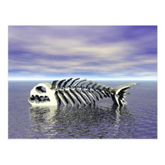 Fish Bones Postcard