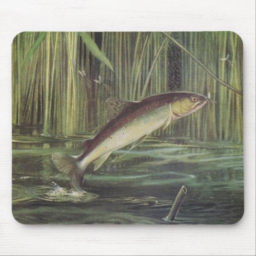 Fish - Brown Trout - Salmo trutta Mouse Mats