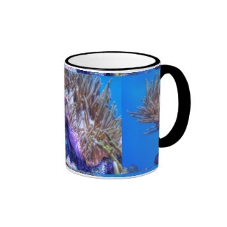 Fish Coral House Coffee Mugs