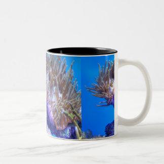 Fish Coral House Mug