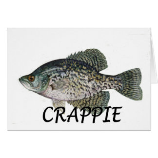 fish crappie greeting card