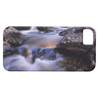 Fish Creek Falls near Steamboat Springs Colorado Case For The iPhone 5