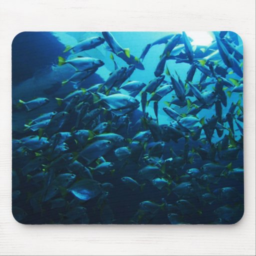 Fish Crowd Mouse Pad