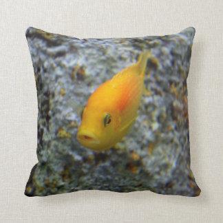 Fish Cushion