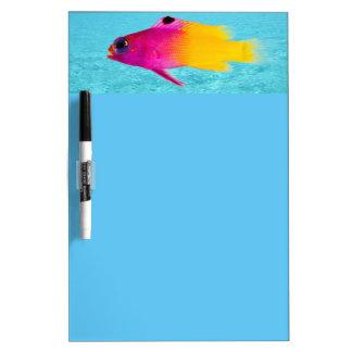 Fish Dry Erase Board