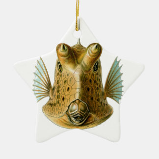 Fish enface christmas ornament