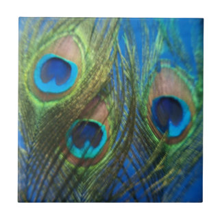 Fish Eye Peacock Feathers Tile