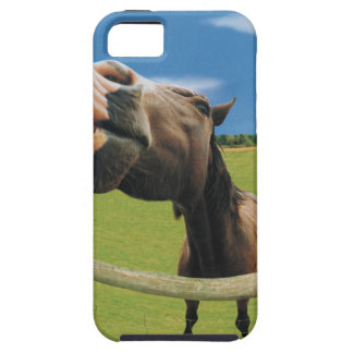 Fish-eye View of Horse Tough iPhone 5 Case