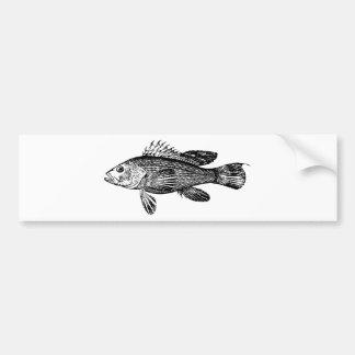 Fish Fisherman Sea Collection Bumper Sticker