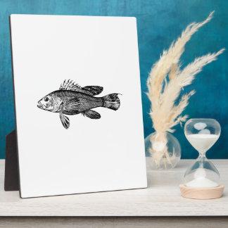 Fish Fisherman Sea Collection Plaque