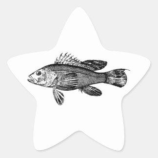 Fish Fisherman Sea Collection Star Sticker