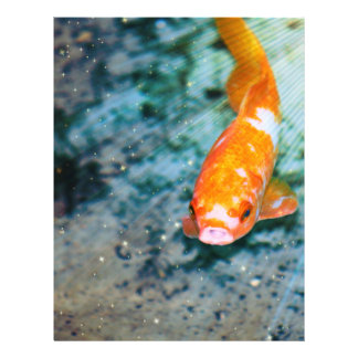"Fish 8.5"" X 11"" Flyer"
