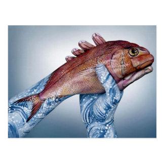 Fish Illusion Postcard