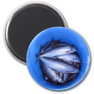 Fish in a Bucket Magnet