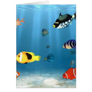 Fish In The Ocean Card