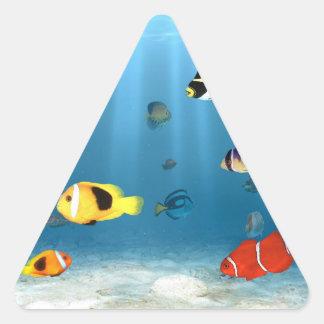 Fish In The Ocean Triangle Sticker