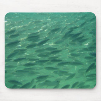 Fish in the Sea Mouse Pad