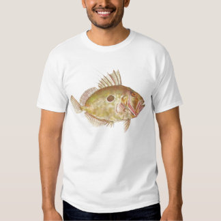 Fish - John Dory - Zeus faber Tshirt