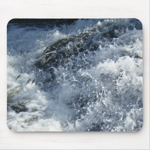Fish Jumping - Fishes jumping Mousepads