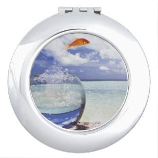 Fish jumping from fish tank travel mirror