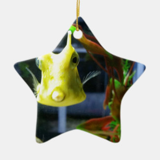 Fish kiss christmas ornament