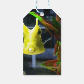 Fish kiss gift tags