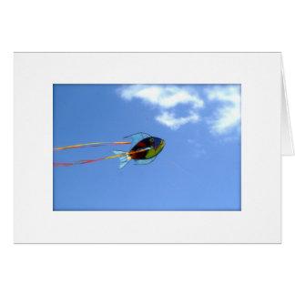 Fish Kite Cards