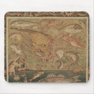 Fish, Molluscs and Crustacea Mouse Pad
