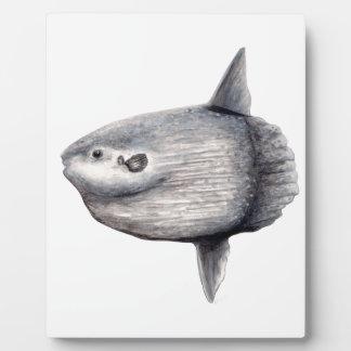 Fish moon plaque
