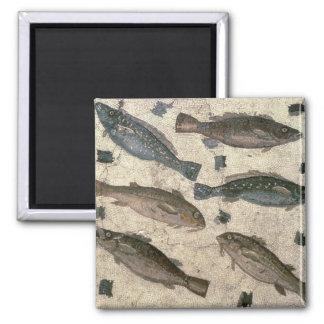 Fish (mosaic) square magnet