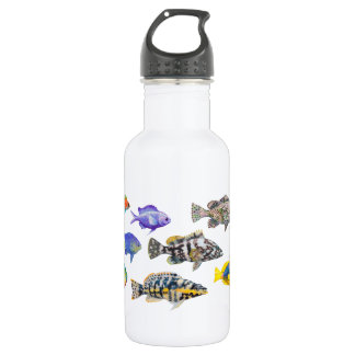 Fish of the Atlantic 532 Ml Water Bottle