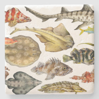 Fish of the Pacific Stone Coaster