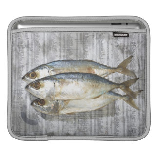 Fish on financial newspaper, elevated view iPad sleeve