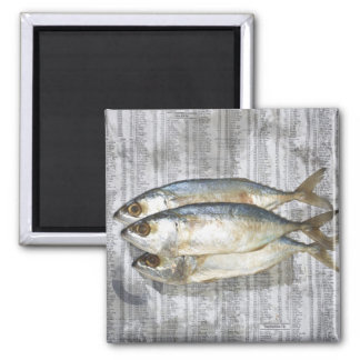 Fish on financial newspaper, elevated view square magnet