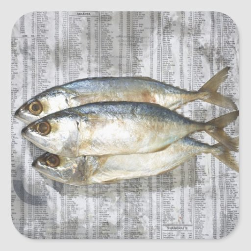 Fish on financial newspaper, elevated view sticker