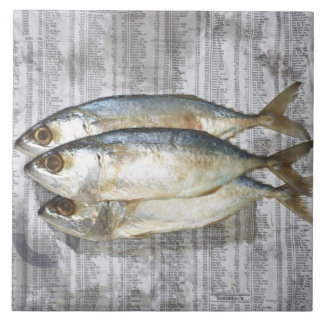 Fish on financial newspaper, elevated view tile
