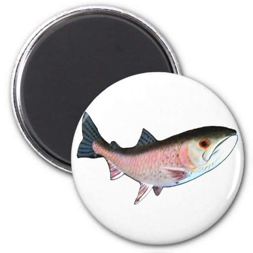 Fish PinkThe MUSEUM Zazzle Gifts 6 Cm Round Magnet