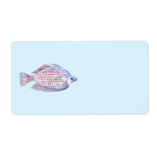 Fish. Red Line Rainbowfish.