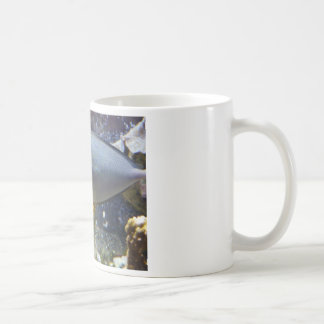 fish,salt water basic white mug