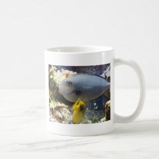 fish,salt water coffee mug