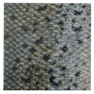 Fish Scales 2 Tile