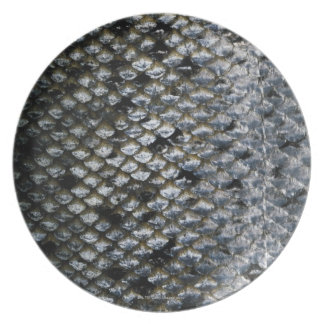 Fish Scales Plate