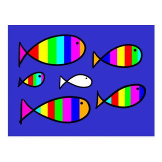 Fish Solo White Postcard