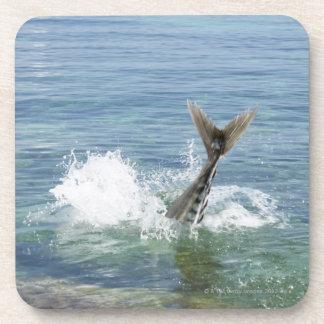 Fish splashing in the sea beverage coaster