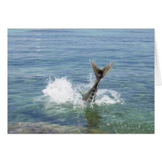 Fish splashing in the sea card