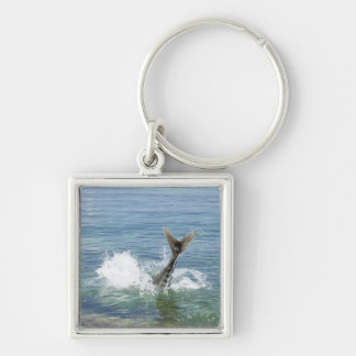 Fish splashing in the sea key ring